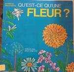 Qu'est-ce qu'une fleur ?
