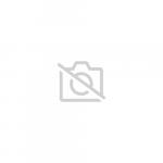 Alphonse et les enfants bergers